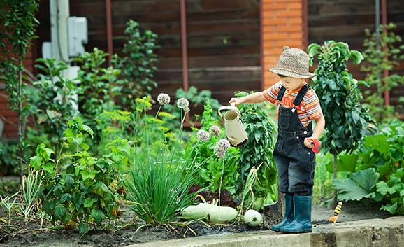 Montessori Eğitim Modeli Nedir Evde Uygulanabilir mi?